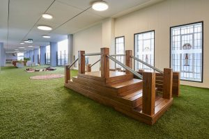 inside view of nido early school at ascot vale