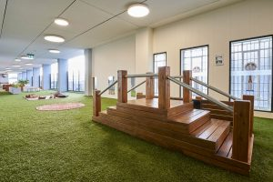 a beautiful inside view of nido early school at ascot vale